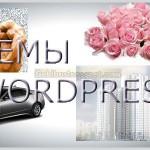 temy-wordpress