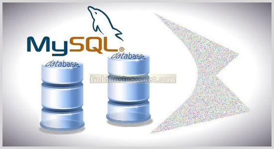 Что означают понятия Sql и MySql