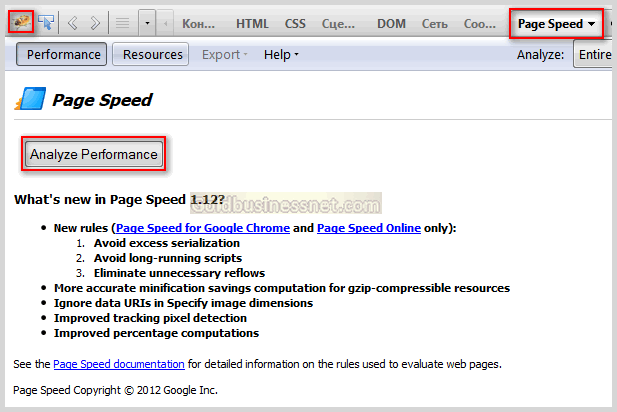 Окно Page Speed