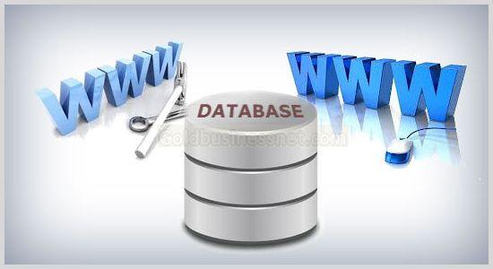 Создание БД, добавление нового сайта и дополнительного домена