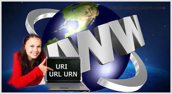 Понятие URL адреса в интернете